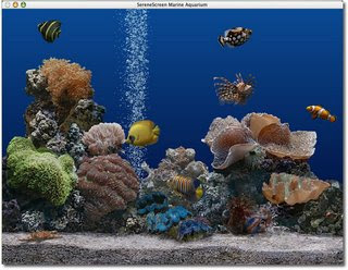 Serene Marine Aquarium Time 2 6   Serial