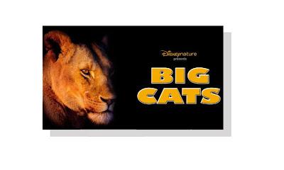 Création du label Disneynature DN+Big+Cats