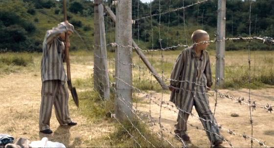 copy of the boy in the striped pajamas novel film comparison  way of remembrance the boy in striped pajamas