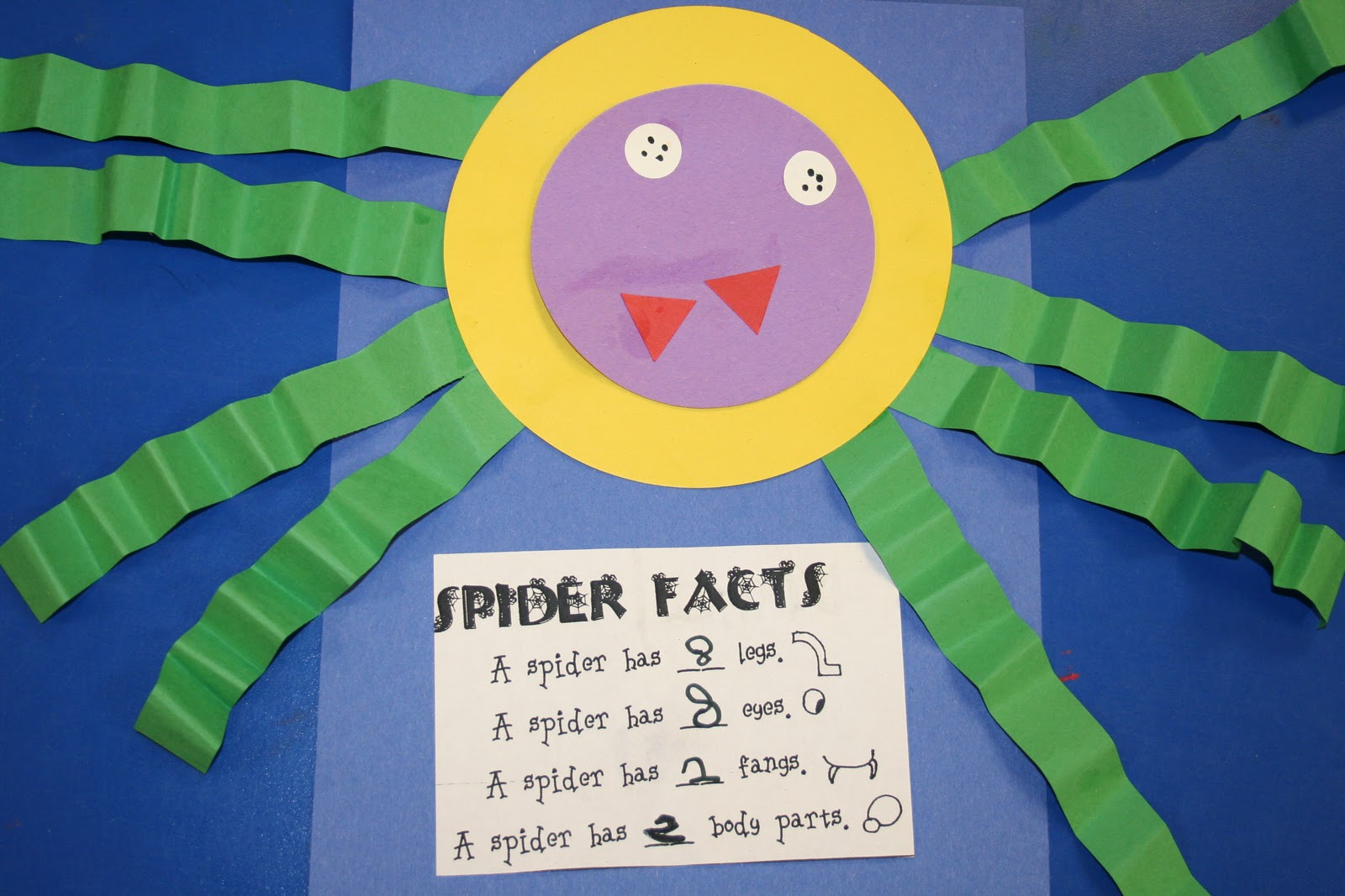 Mrs Lee S Kindergarten Spiders Spiders Spiders