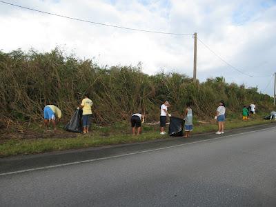Pala Potu Cleanup