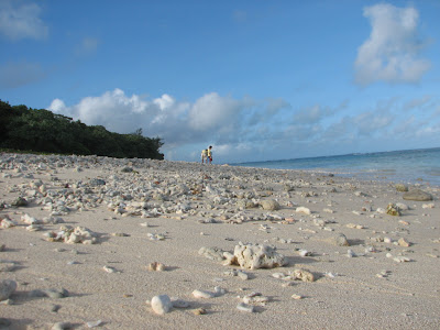 Wing Beach Saipan