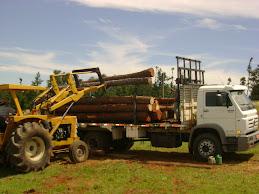 Maquinas carregando o Caminhão