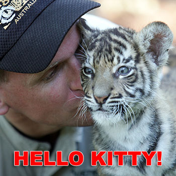 [Tiger-cub-+4+name]