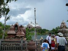 The Animal Kingdom (Disney)