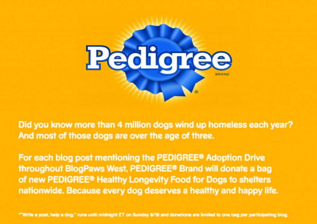 Dog Food Pedigree Chum