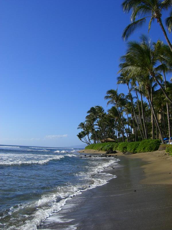 [Beach+(from+Jen]