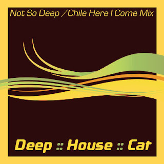 Deep House Cat Show with D.J. philE :: April 2007 :: Special :: Not-So-Deep Or Chile-Here-I-Come Mix