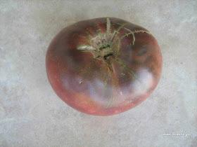 ντομάτα-μαύρη-cherokee purple