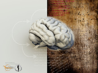 Scientific Wallpaper Hd Neuroscience Blog Neuroscience 3d Wallpapers Updates I