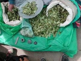 NO ROTUNDO a la legalización
