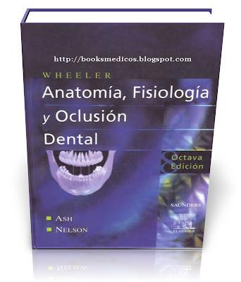 Antomía, Fisiología y Oclusión Dental - Major M. Ash Jr., James S ...