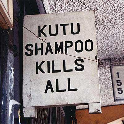 Kutu shampoo kills all