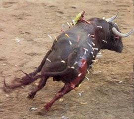 No Bull Shoes Sale