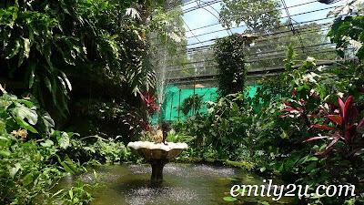 Taman Rama-Rama Kuala Lumpur Butterfly Park [The Habitat]
