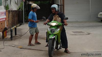 Monkey Ride @ Port Dickson, Negeri Sembilan