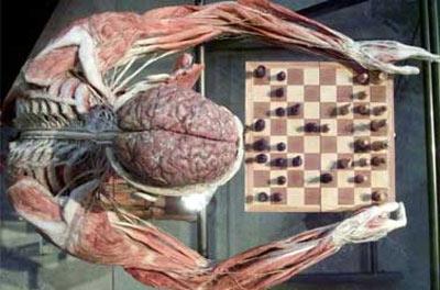 [cadáver+xadrez.jpg]