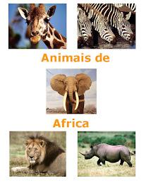 Fauna da Africa