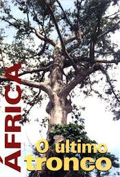 Flora da Africa