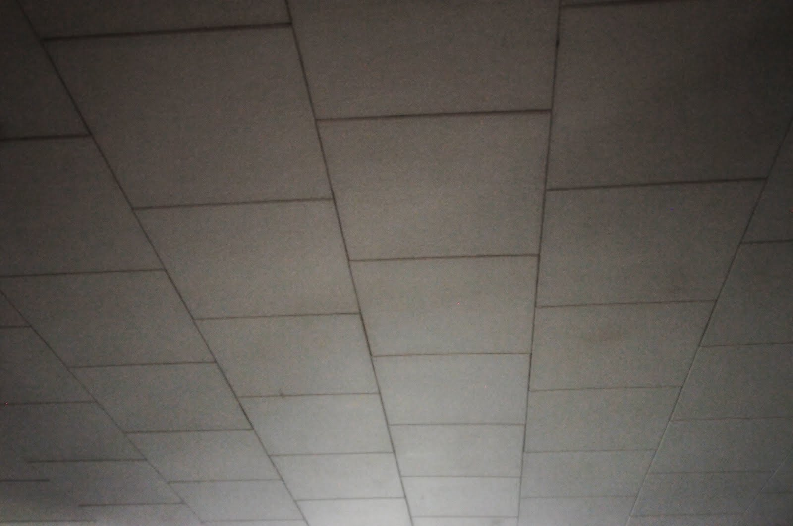 Types of old ceiling tiles gradschoolfairs old ceiling tiles tile design ideas dailygadgetfo Gallery