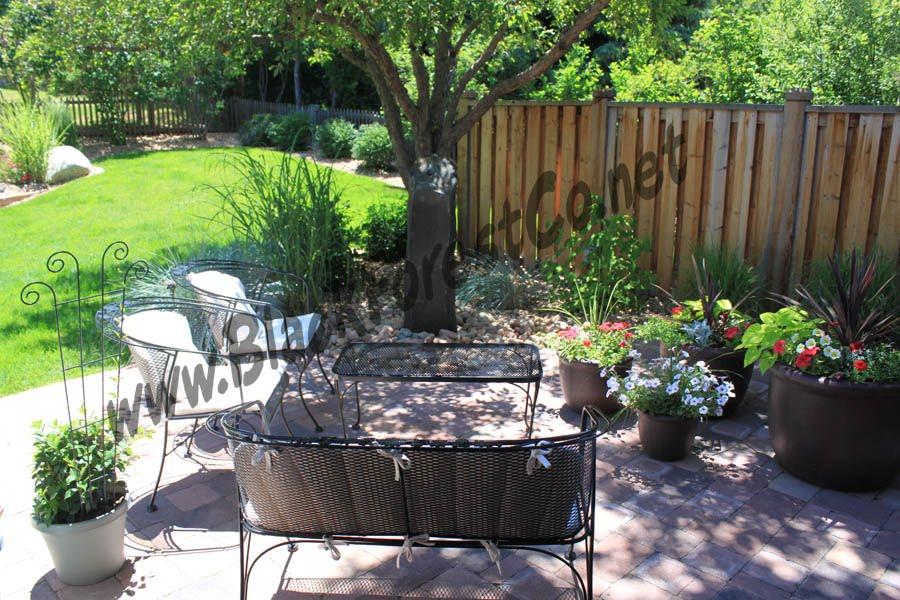 Shade Garden Along Fence