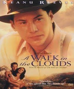filme caminhando nas nuvens dublado rmvb