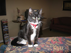 Moses- the cat (who is no longer with us)