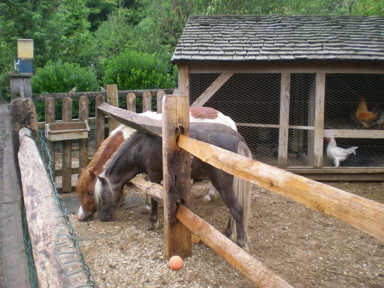 Scole Pole Barn Kits Syracuse Ny