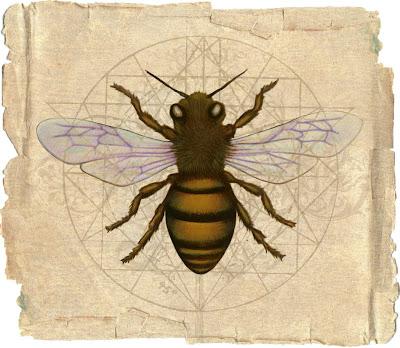 Delphic Bee