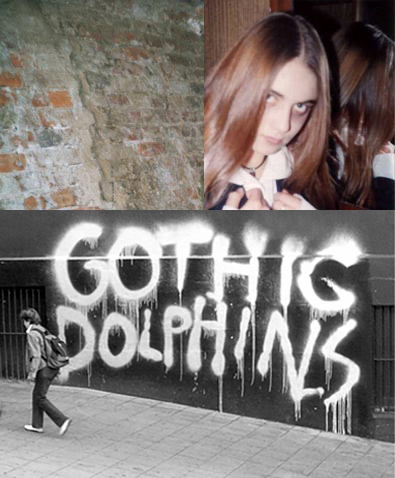 [attack.dolphins.jpg]