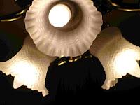 shaped CFLs