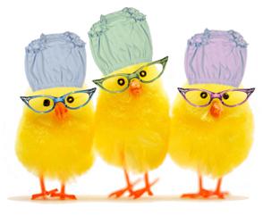 [chicks_in_undies.jpg]