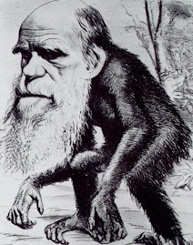 Darwin-mono