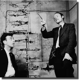 James Watson y Francis Crick,