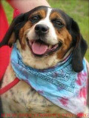 Bertha Rescued!7/18  Still Alive!!!7/17/10 On  TODAY'S KILL LIST Newnan Georgia