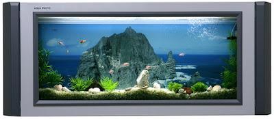 aqua photo: l'acquario da parete   home inutility & fashion design