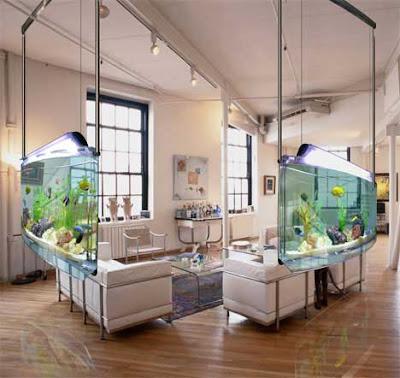 asp aquarium%5B1%5D Spacearium: Acquario moderno