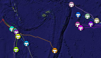 screen shot of the Green Peace whale tracking map