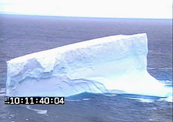 Iceberg off Dunedin Coast.