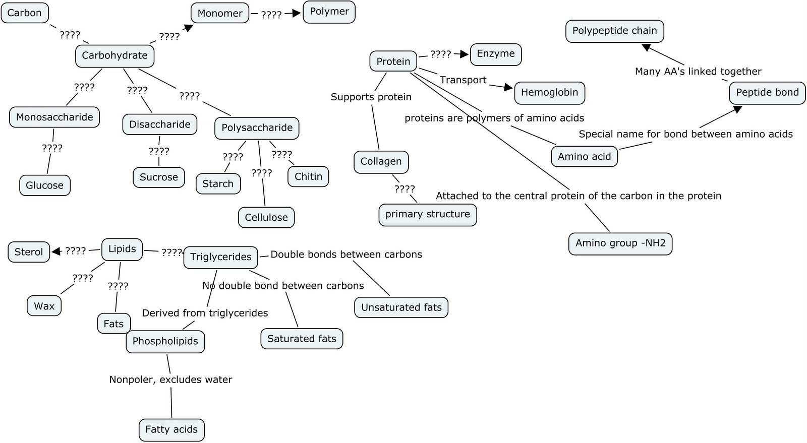 Concept Map Of Macromolecules.Zara S Blog Of Mystical Science My Concept Map It S A Work In