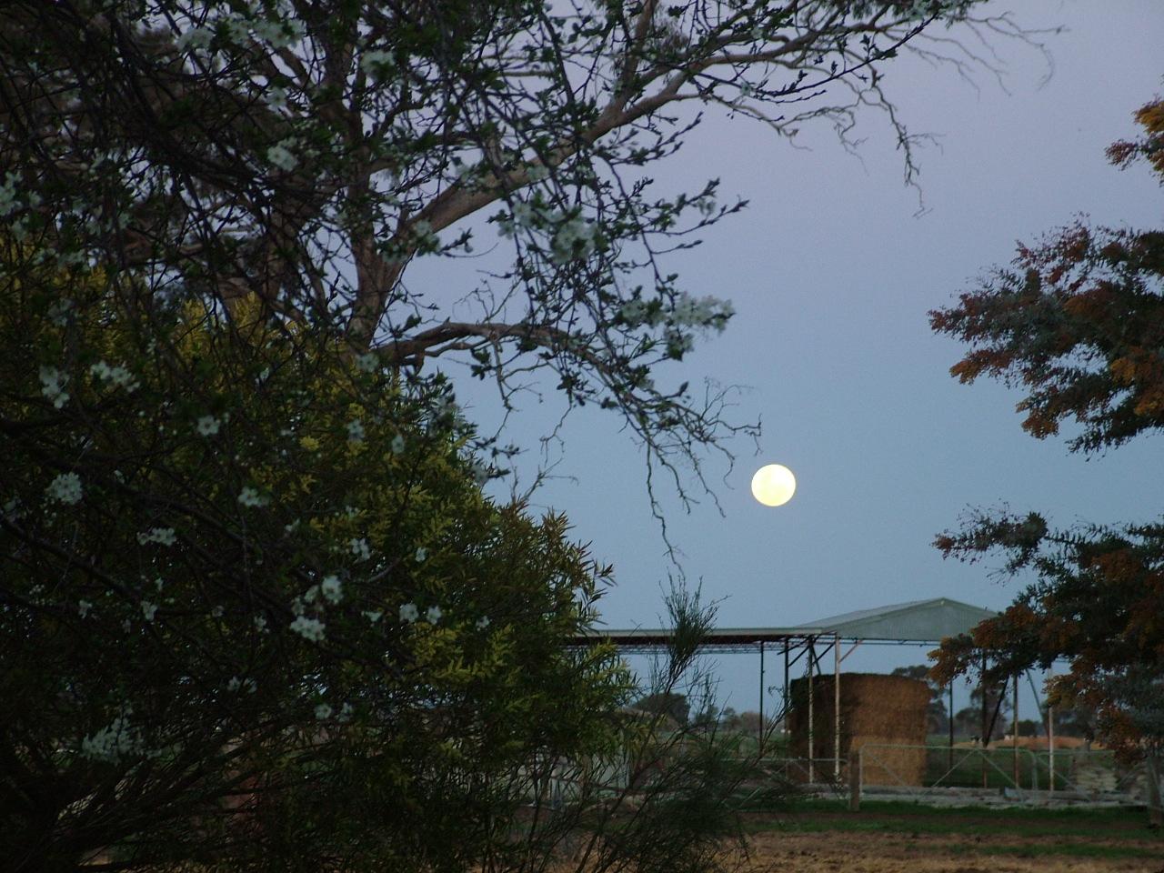 [august+full+moon.JPG]