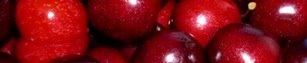 [berries.bmp]