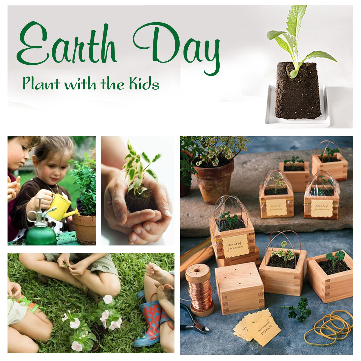 Everyday Is A Hollyday Earth Day Party Ideas