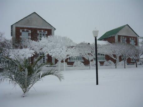 Nieve en Guatrache
