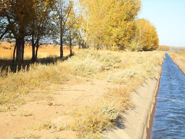 canales de riego en La Pampa