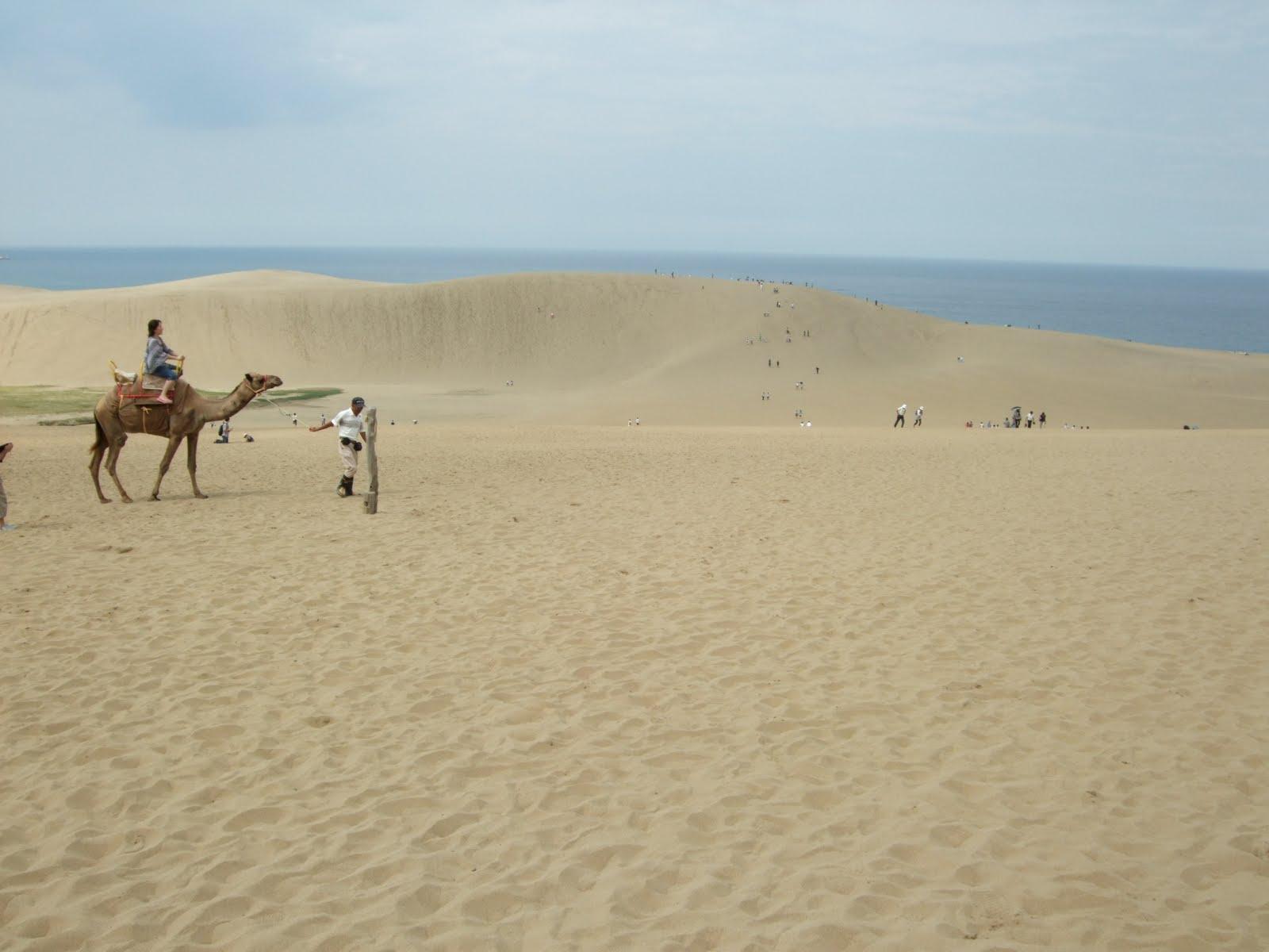 鳥取砂丘 に対する画像結果
