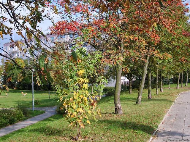 Jesień, jesień, jesień... jak to tak