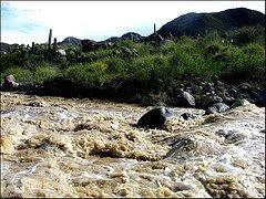 corriente en el río