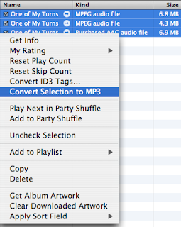 Can i download itunes to my mp3 player