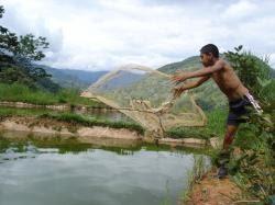 Ictiofilia construcci n de estanques piscicolas for Construccion de estanques